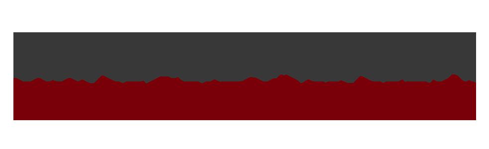 Lorenzo Marconi High Performance Coach